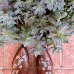Cowboy Boots Floral Cowboy Boots